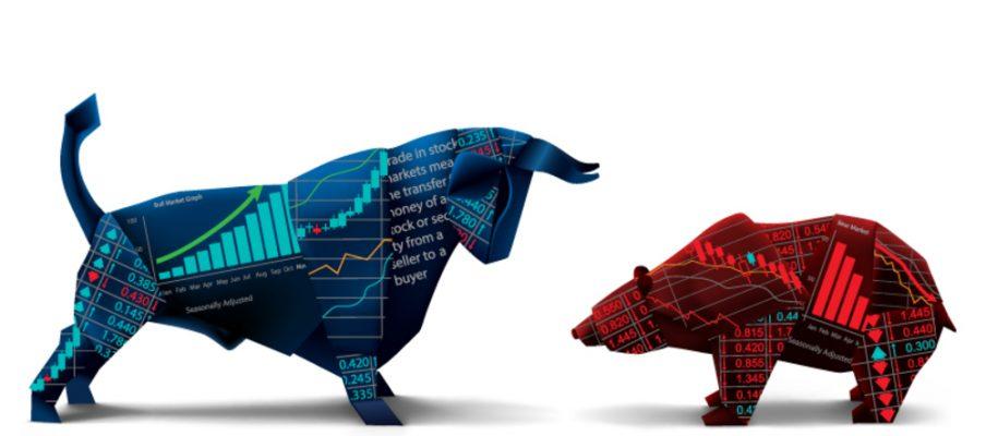 a-bull-vs-bear